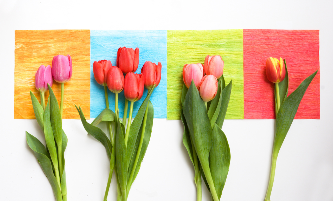 Top Spring Party Themes